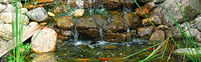 Pond Design | Alpine Aquatics Pond & Pet - Blaine County,ID